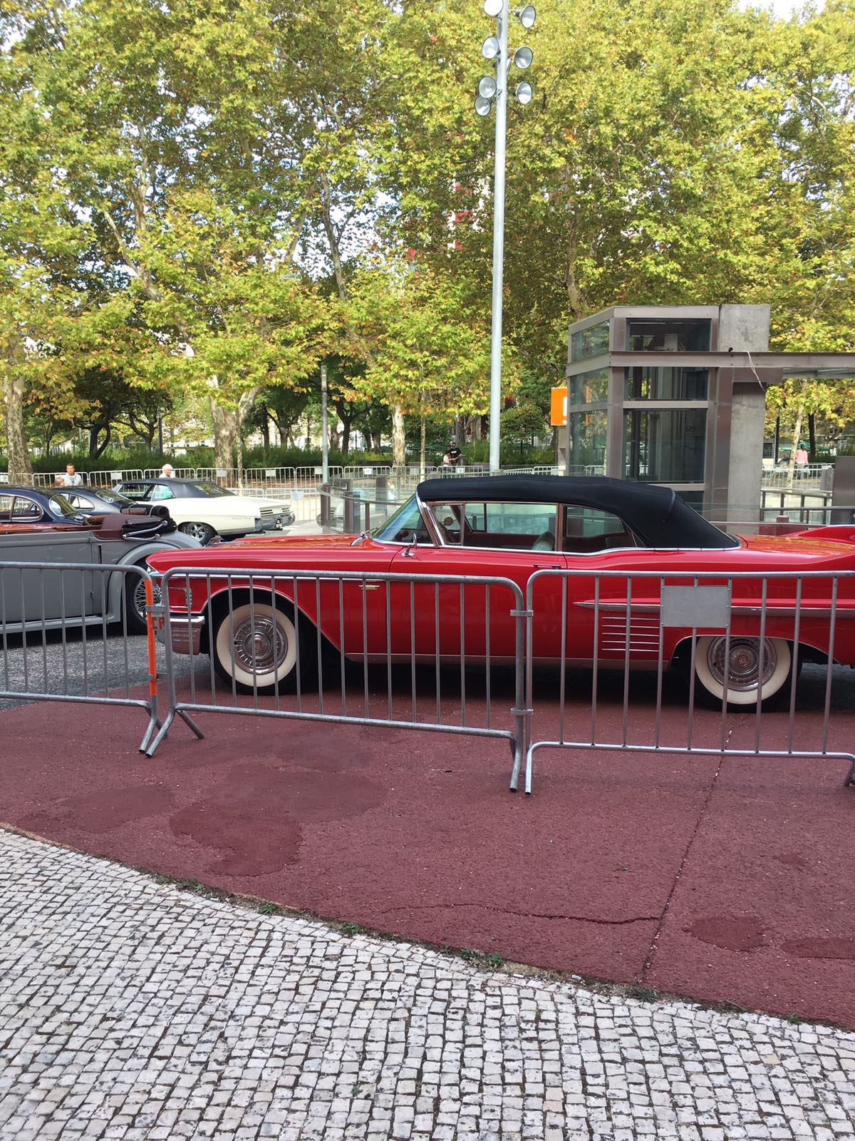 Carnalentejana - Motor Vintage