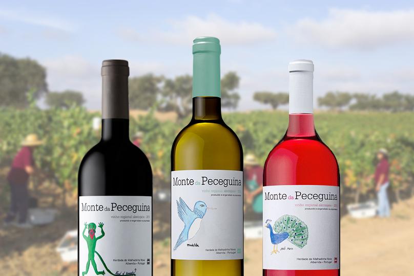 Prova de Vinhos - Herdade da Malhadinha Nova - Vinhos Monte da Peceguina